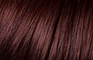 l'oreal hair color chart garnet