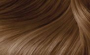 clairol hair color butterscotch