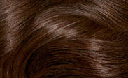 สีผม chocolate brown
