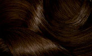 clairol hair color dark golden brown