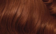 clairol hair color light auburn