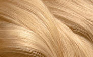 สีผม chart light blonde