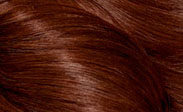 clairol hair color medium auburn