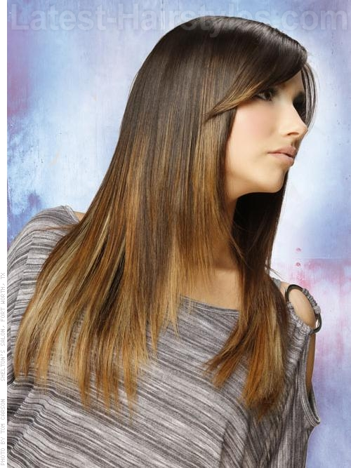 A long sleek brunette hair color and style side view