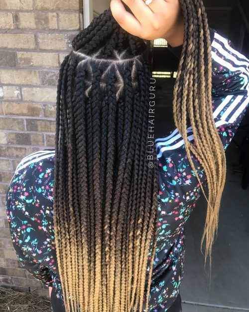 15 Blonde Box Braids That Are Straight Fire In 2019